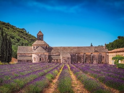 PROVENZA: RICORDI COLOR LAVANDA